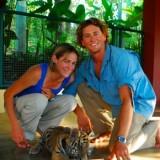 tigers 8