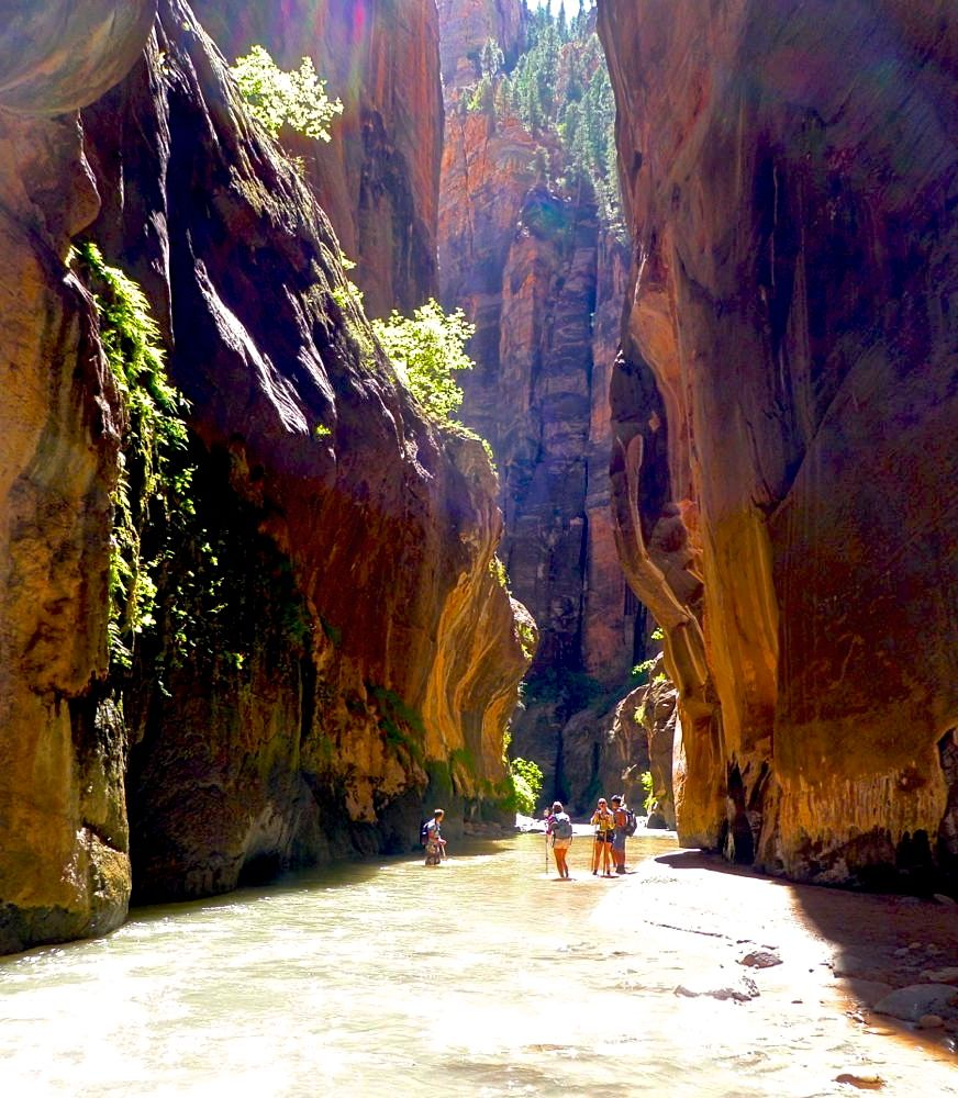 Hiking The Narrows In Zion National Park Our Travel